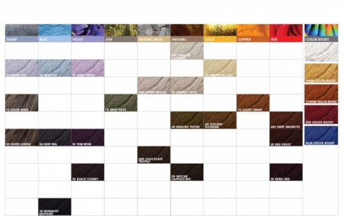 Pravana Colorlush Colour Chart